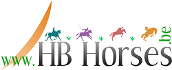 HBHorses.be