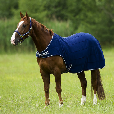 TRAININGSDEKEN FLEECE EQUI-THEME